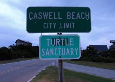 Turtle Sanc 3